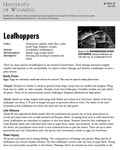 Leafhoppers cover