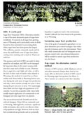 Nematode-Resistant Trap Crops: A New Method of Pest Control for Wyoming Sugar Beet Growers cover