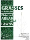 Low-Maintenance Grasses for Revegetating Disturbed Areas and Lawns cover