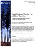 Dwarf Mistletoe Affecting Pines and Firs of Wyoming cover