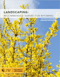 Landscaping: Recommended Shrubs for Wyoming cover