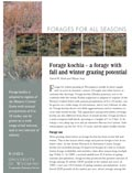 Forage Kochia: A Forage with Fall and Winter Grazing Potential cover