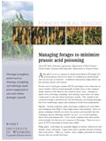 Managing Forages to Minimize Prussic Acid Poisoning cover