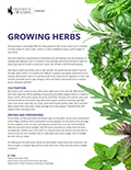 Growing Herbs cover