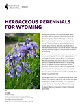 Landscaping: Herbaceous Perennials for Wyoming cover