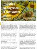 Irrigation Management in Sunflowers cover