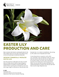Easter Lily Production and Care cover