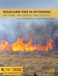 Wildland Fire in Wyoming: Patterns, Influences, and Effects cover