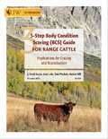 3-Step Body Condition Scoring (BCS) for Range Cattle cover