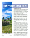 Net Present Value (NPV) cover