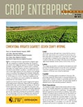 Crop Enterprise Budget: Irrigated Sugarbeet, Goshen County Wyoming cover