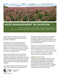 Weed Management in Sainfoin cover