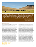Beef Cow Size: industry trends, economics, and implications for grazing Wyoming rangelands cover