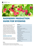 Raspberry Production Guide for Wyoming cover