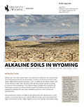 Alkaline Soils in Wyoming cover