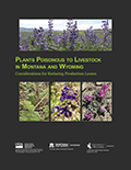 Plants poisonous to livestock in Montana and Wyoming: Considerations for reducing production losses cover