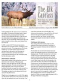 The Elk Carcass cover