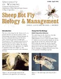 Sheep Bot Fly Biology and Management cover