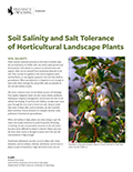 Soil Salinity and Salt Tolerance Horticultural and Landscape Plants cover