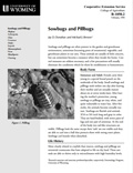 Sowbugs and Pillbugs cover
