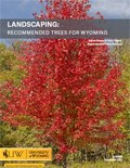 Landscaping: Recommended Trees for Wyoming cover