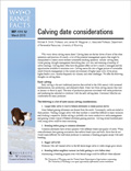Calving date considerations cover