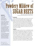 Powdery Mildew of Sugar Beets cover