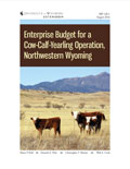 Enterprise Budget for a Cow-Calf-Yearling Operation, Northwestern Wyoming cover