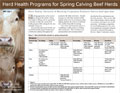 Herd Health Programs for Spring Calving Beef Herds cover