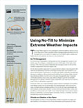 Using No-Till to Minimize Extreme Weather Impacts cover