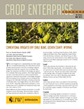 Crop Enterprise Budget: Conventional Irrigated Dry Edible Beans, Goshen County, Wyoming cover