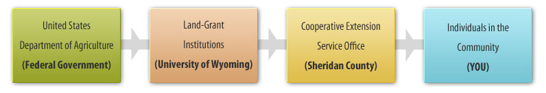 Cooperative Extension Flow Chart